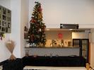 Χριστούγεννα 2012_1